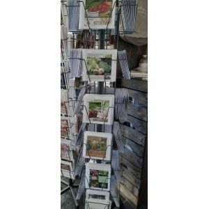 20 Fotokaarten Sterkte/Beterschap
